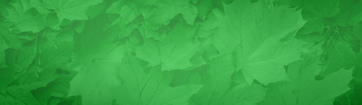 Gartenhäuser mit schneller Lieferung im September