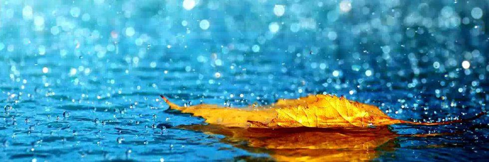 Gartenhaus und Regenwetter – Vorbereitung auf den Herbst